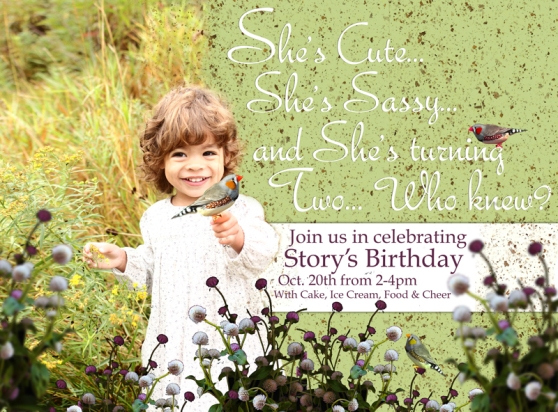 Story's Birthday Invite